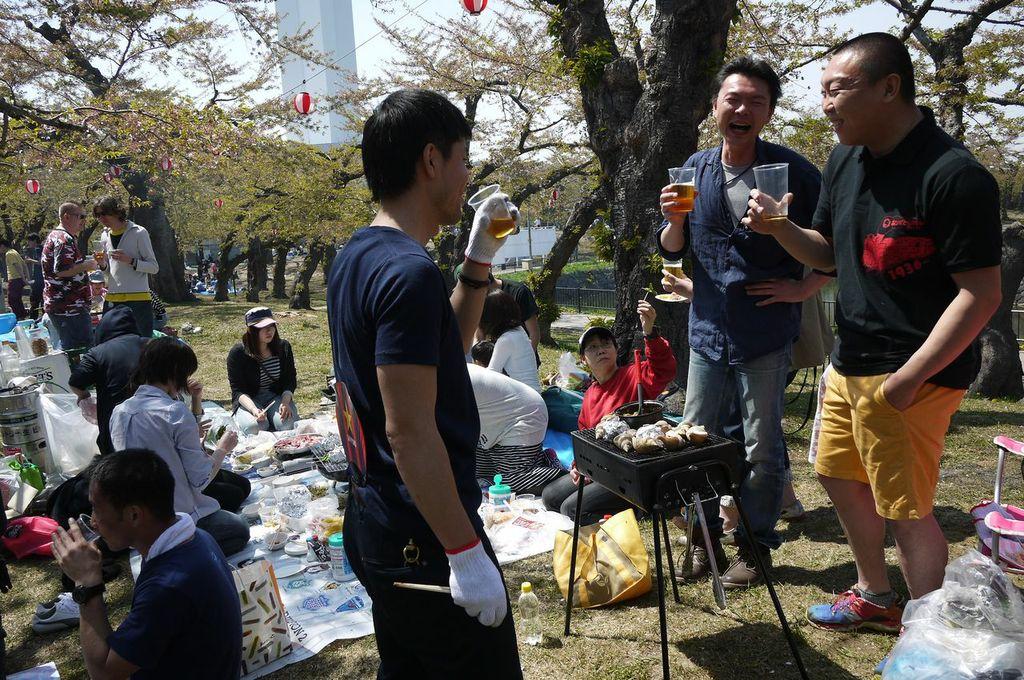 函館,五稜郭,花見