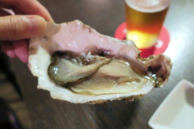 「クラフトビアバルジュン」の生牡蠣(仙鳳趾産、1個500円)