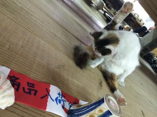 沖縄,やちむん,猫