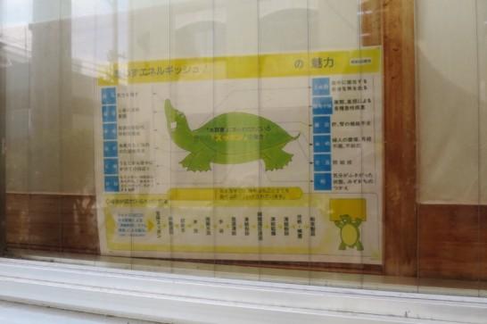 やま川,那覇,久茂地,スッポン