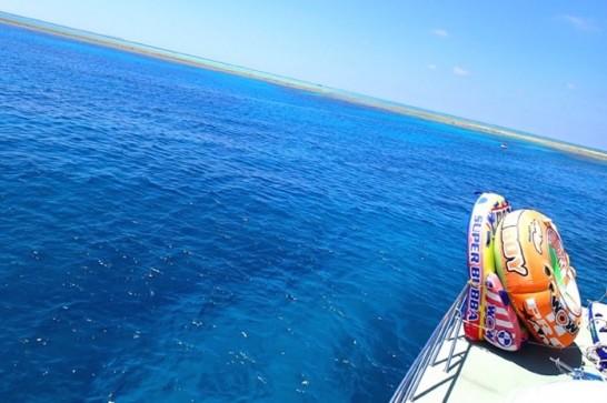 okinawa kerama news snorkeling_028