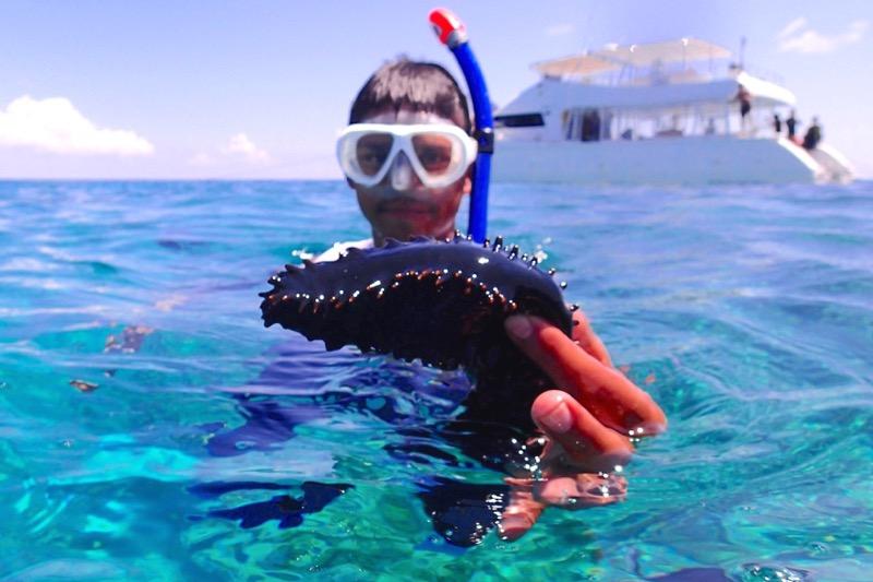 okinawa kerama news snorkeling_050
