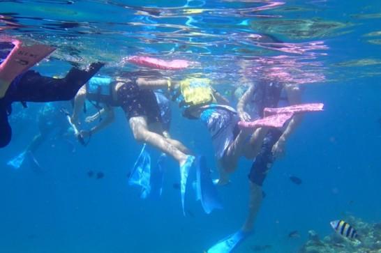 okinawa kerama news snorkeling_074
