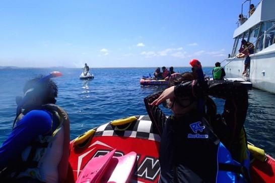 okinawa kerama news snorkeling_102