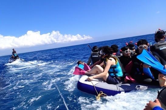 okinawa kerama news snorkeling_119