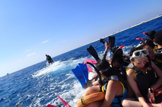 okinawa kerama news snorkeling_126