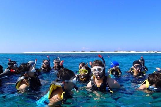 okinawa kerama news snorkeling_131