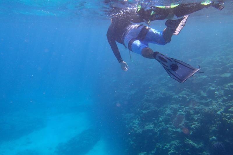 okinawa kerama news snorkeling_148