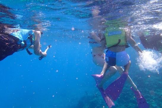okinawa kerama news snorkeling_159