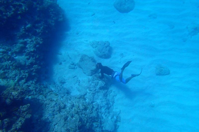 okinawa kerama news snorkeling_163