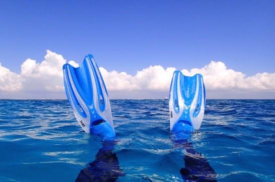 okinawa kerama news snorkeling_167