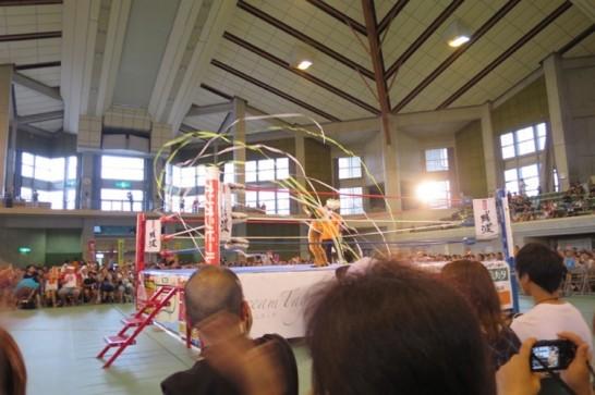 琉球ドラゴンプロレスリング,琉球ドラゴンチャンプルー,2015,_7002