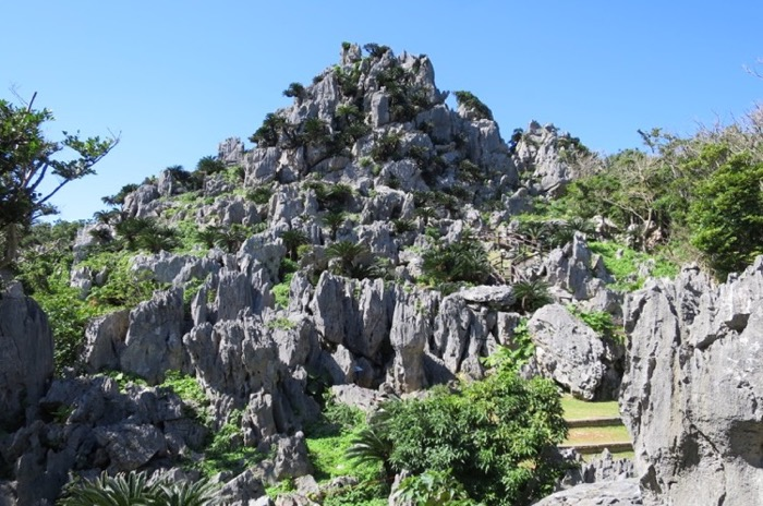 大石林山,沖縄北部,やんばるやんばる