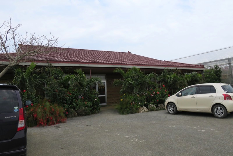ユートピアファーム宮古島,マンゴー