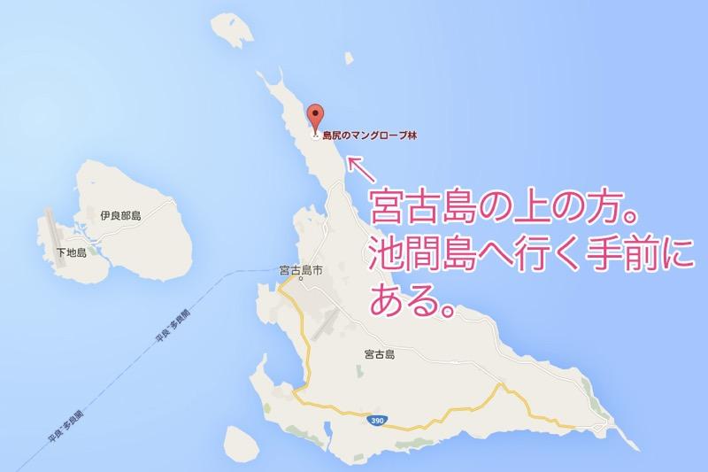 島尻マングローブ林,宮古島