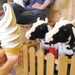 「山川牧場ミルクプラント」でソフトクリーム(コーヒーミックス、300円)を食べてみた