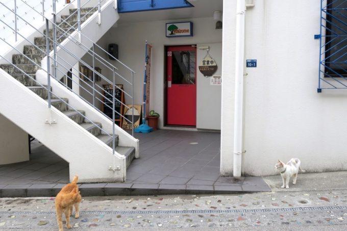 那覇・壺屋の定食屋「リゾム」、入り口