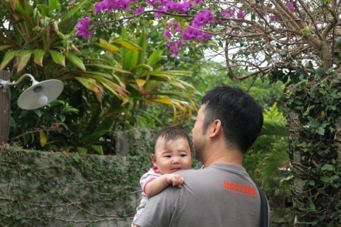 屋宜家の庭には様々な植物が。ブーゲンビリアが咲いていた。