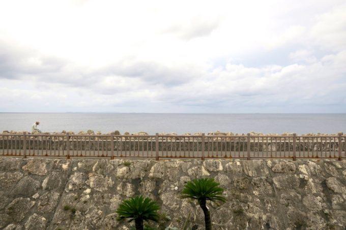 「海が見えるそば家」から見える東シナ海。
