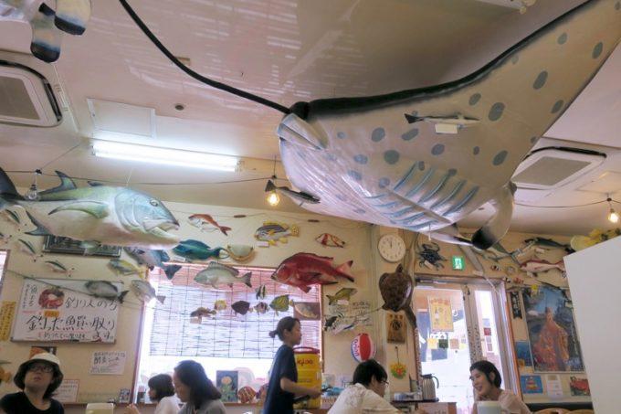 那覇・赤嶺「魚屋直営食堂 魚まる」の店内にはお魚の模型がいっぱい。
