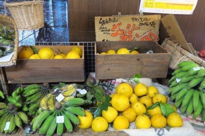 ジューシーオレンジと島バナナ