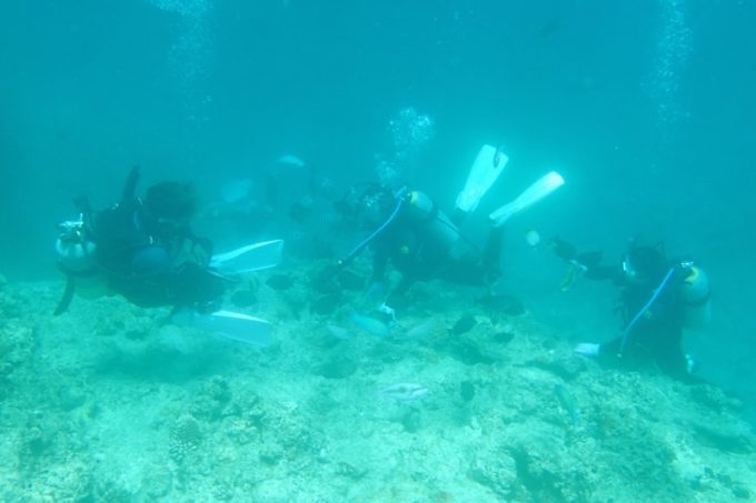 青の洞窟付近を泳ぐ、ダイバーたち。