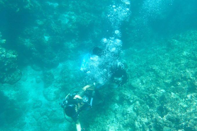 海中の体験ダイビングの人たち。