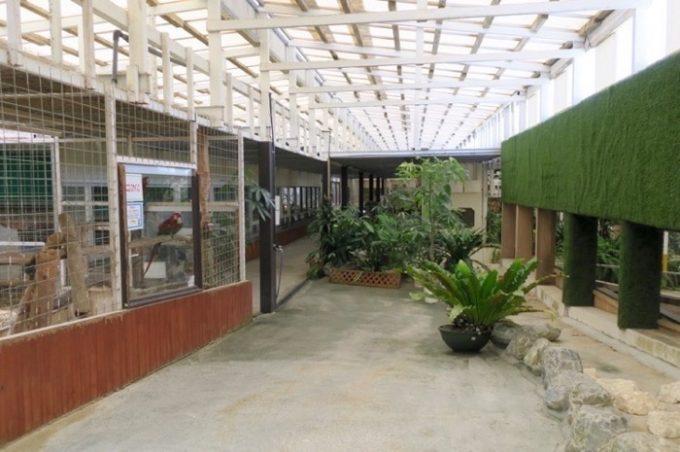 ミニミニ動物園の内部。