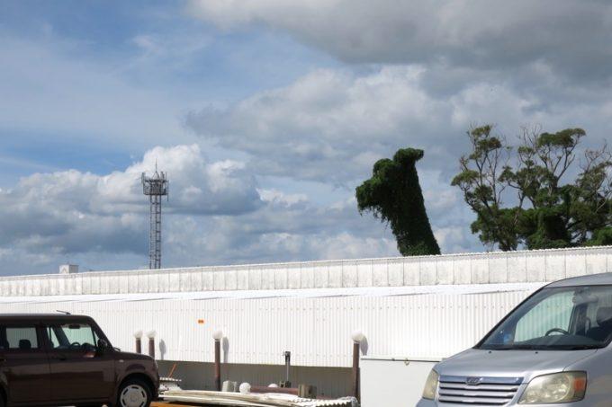 駐車場から見えた、巨大キリン。