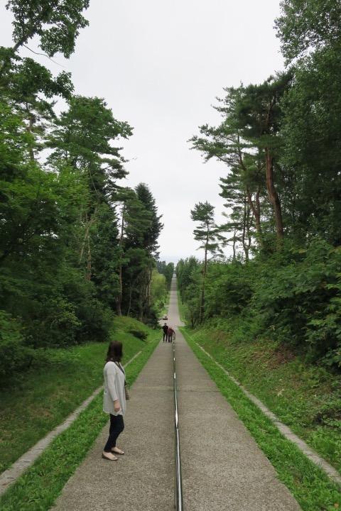 坂道を登り、振り返る。天気が悪くて残念。