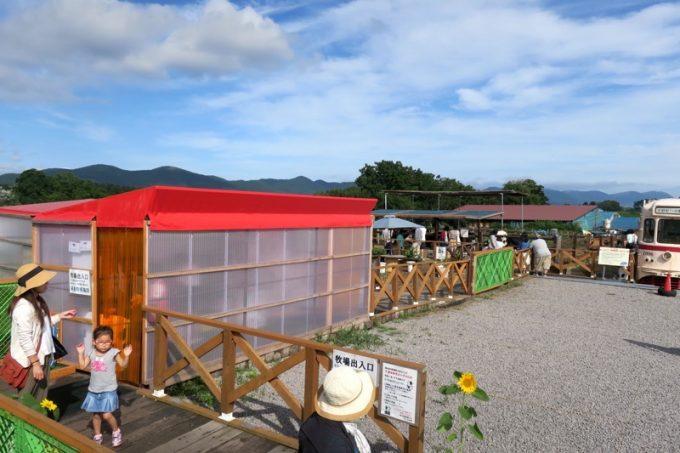 函館牛乳に隣接した早乙女牧場は誰でも立ち寄ることができる
