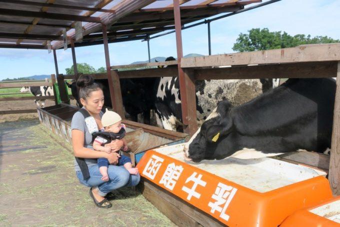 お子サマー meets 函館牛乳の牛さん。