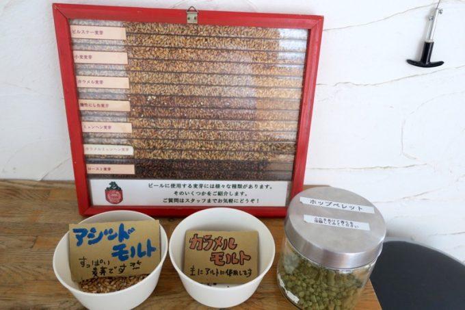 「ベアレン醸造所」で使用しているモルトとホップの展示。