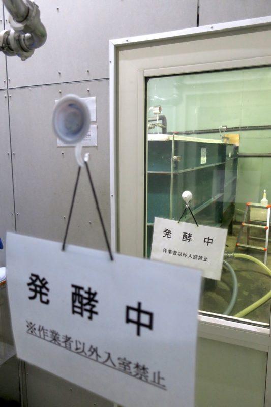 発酵室は立ち入れないので、外から覗く。