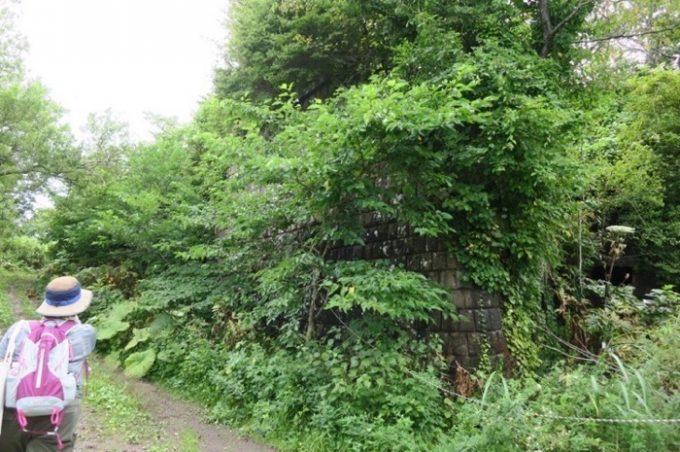千畳敷コースを歩いていくと、草木に覆われた石垣と奥に四角い穴が見えた。