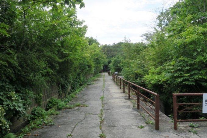 御殿山第二砲台の通路と地下にある砲側庫。