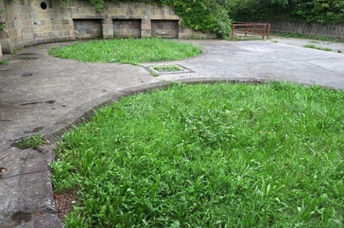 砲座跡は今は草だらけ。