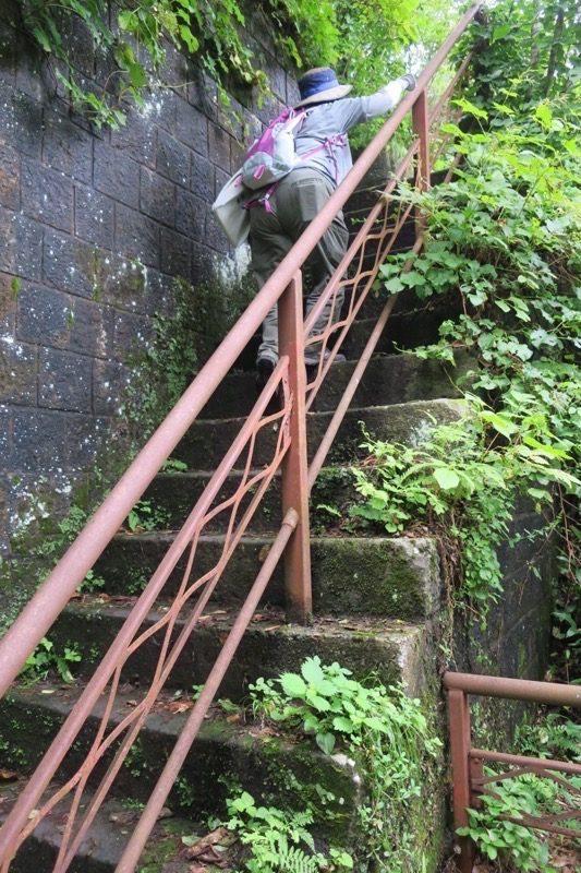 階段は幅がせまく、垂直に上り下りするため、移動が大変だ。