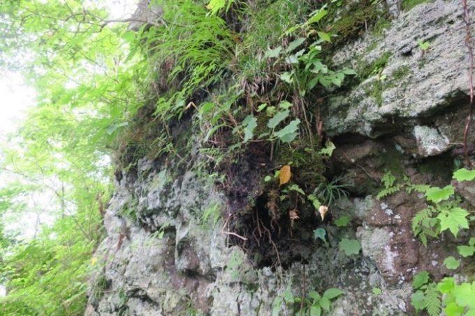 岩肌に見える地層が心をくすぐる。