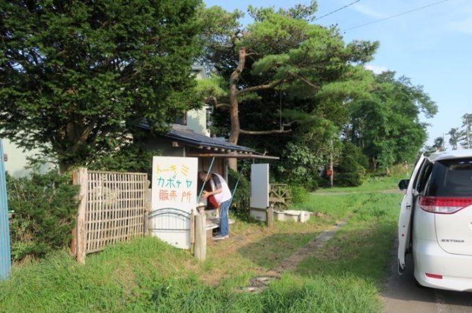 周辺は農道で車通りも少ないため、路駐してカボチャを購入する。