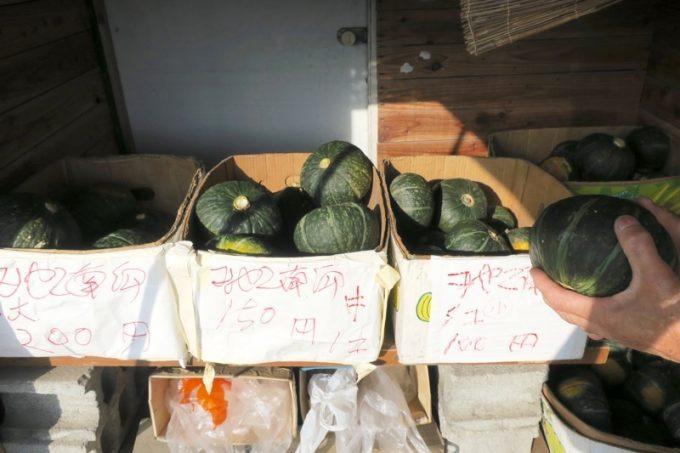 みやこ南瓜はサイズによって価格100〜200円となっている。
