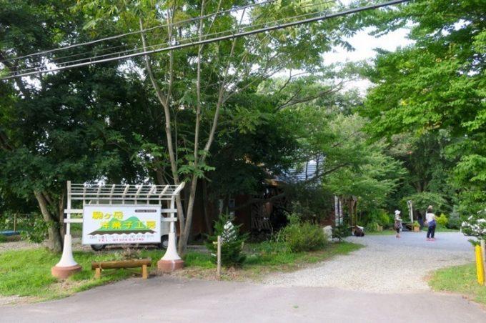 「駒ケ岳洋菓子工房」の入り口。森のような雰囲気。