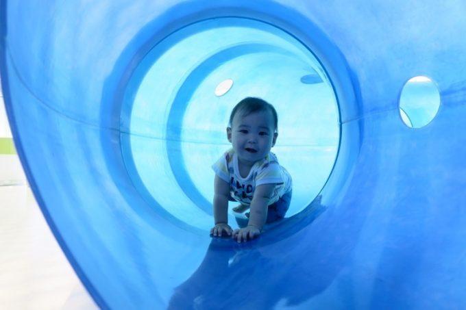 青い筒をハイハイでくぐるお子サマー。