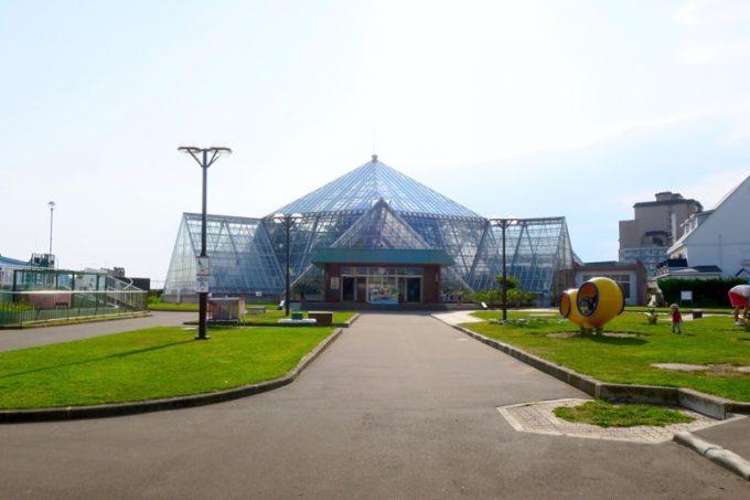 函館・湯の川にある「函館市熱帯植物園」の敷地に入ってすぐ。