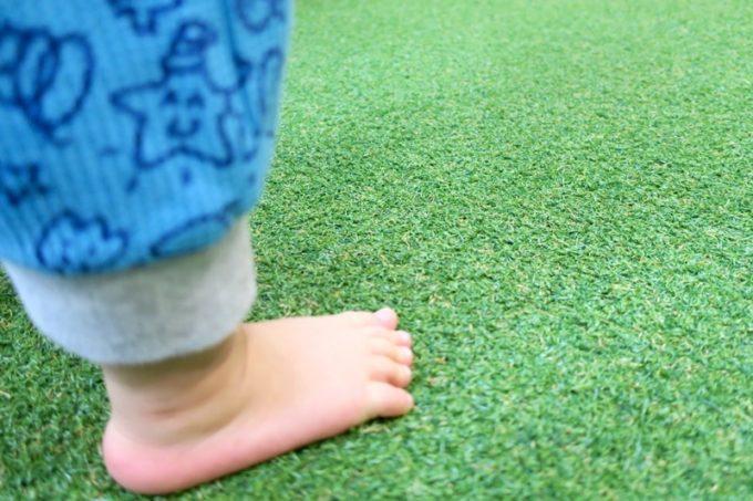 この施設の床全面が人工芝だった。
