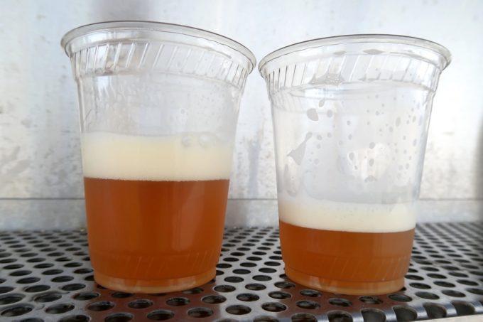 「キャンプキンザーフェスティバル」で飲んだストーンイPAとバラストポイント。