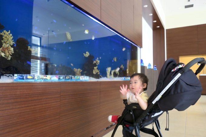 糸満「サザンビーチホテル&リゾート沖縄」のロビーにある水槽。