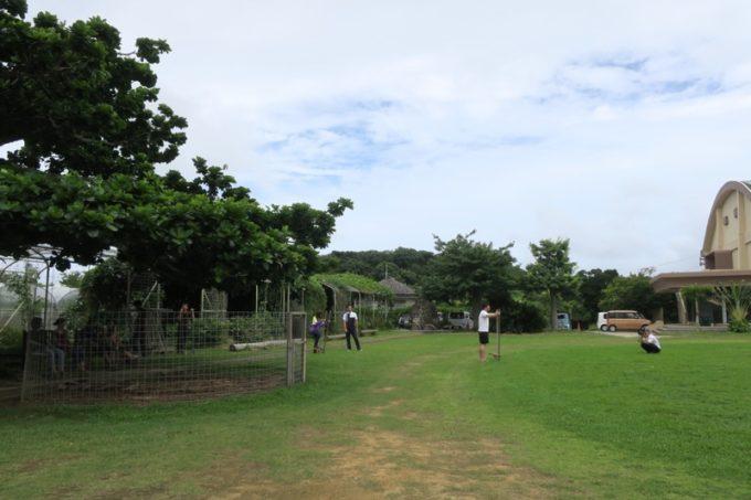 沖縄・今帰仁「あいあいファーム」のグラウンドで自由に遊ぼう。