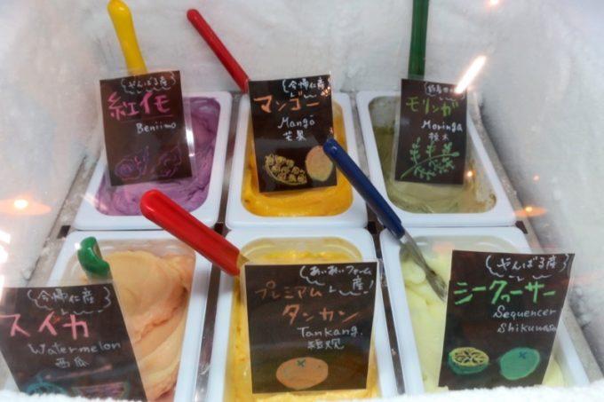 沖縄・今帰仁「あいあいファーム」直売所で売られているアイスがおいしそう。