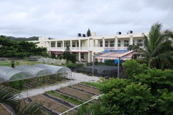 沖縄・今帰仁「あいあいファーム」にあるファーム。